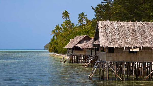 Superior Papuan Cottage